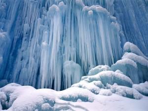 Congelar a una persona