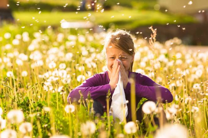 Remedio casero para alergia
