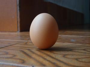 Amarre con huevo
